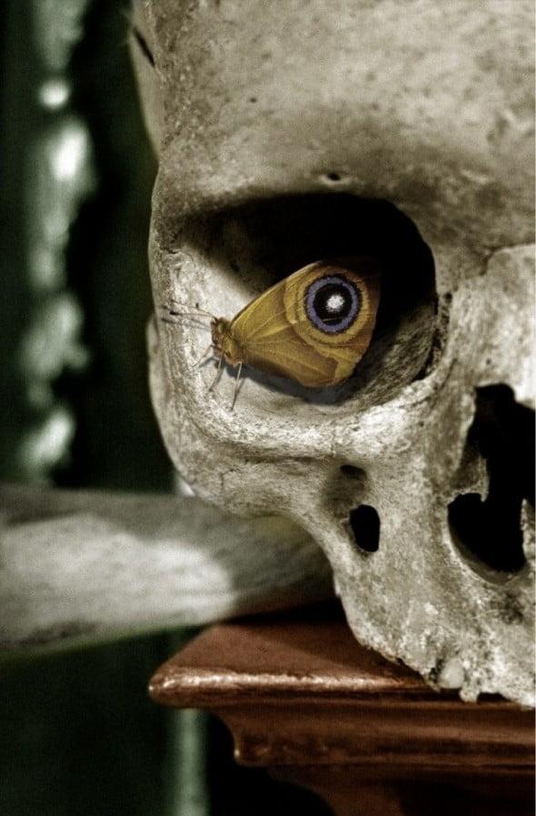 La mariposa y la invención de la muerte