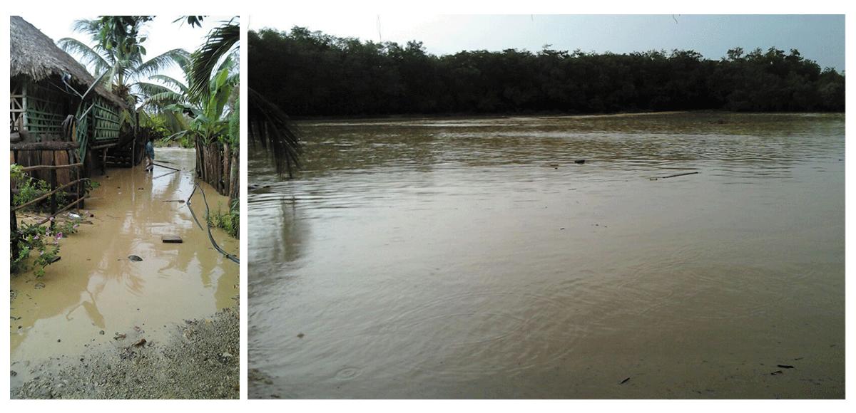 En Moñitos: Lluvias y vientos afectaron cultivos y vías rurales