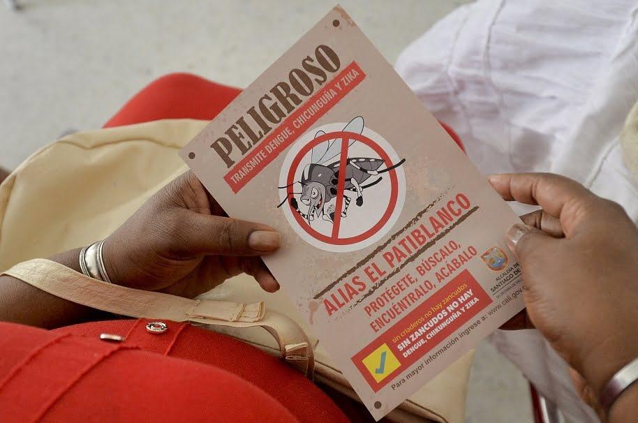 Mosquito del dengue y chikunguña se adapta cada vez mejor a la altura