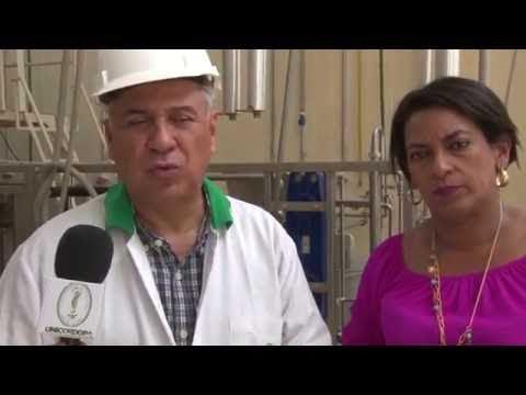 Unicórdoba y Uniatlántico desarrollarán jugo de Marañón para diabéticos tipo 2