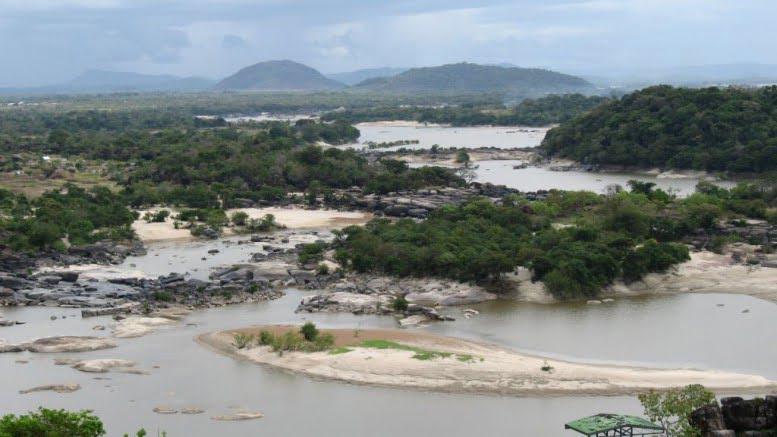 ¿Qué tan aptos son los suelos de la Orinoquía colombiana para ganado y cultivos?