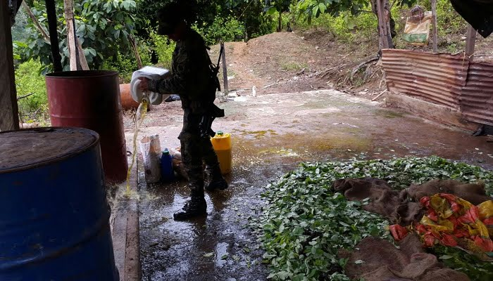 Ejército neutraliza laboratorio ilegal del Clan del Golfo con una tonelada de hoja de coca
