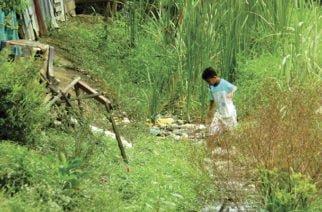 El Canal del Níspero, foco de infecciones y hábitat de serpientes