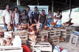 La Asociación de Mujeres Campesinas Productoras de Tierradentro inician programa de proyectos productivos