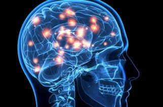 Ejercitar y estimular al cerebro ayudan a mejorar la memoria