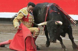 Prohibición de las corridas de toro avanza