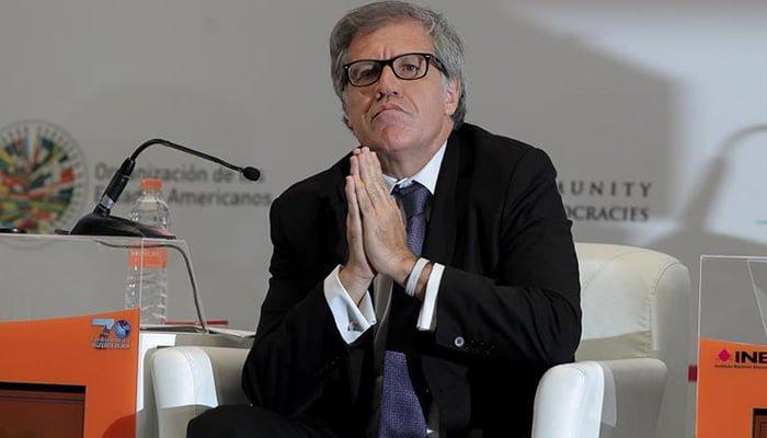 Almagro felicitó al Gobierno colombiano por reanudar diálogos con el ELN