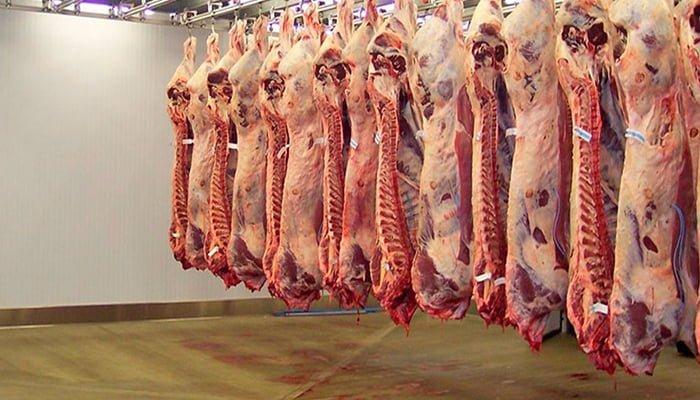 Plantas procesadoras de carne bovina en Córdoba no cumplen con los requisitos