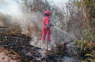 Departamento de Córdoba en alerta roja por incendios forestales