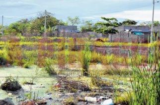 Urbanización Monterroble es solo promesas