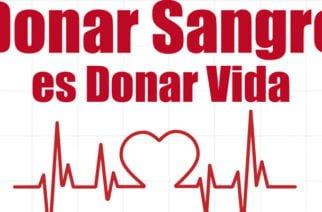 Hoy se celebra el Día Mundial del Donante de Sangre