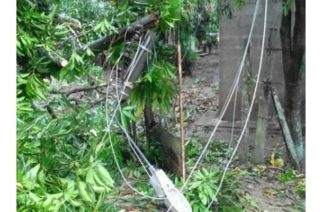 Vendaval dejó sin energía a los municipios de San Pelayo y Cotorra