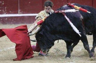 Vuelven las corridas de toros tras decisión de la Corte Constitucional