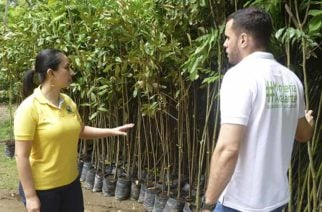 URRÁ dona árboles a Alcaldía de Montería