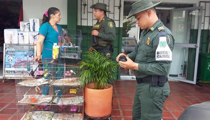 Policía Ambiental se tomó mercado de Cereté