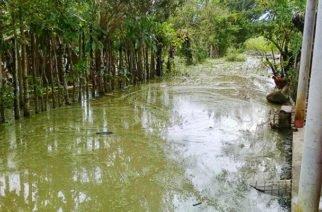 Municipio de Cotorra afectado por temporada invernal