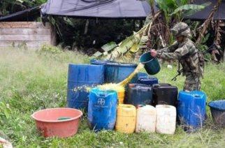 Destruyen laboratorio de coca en zona rural de Tierralta
