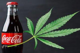 Coca-Cola con Cannabis, la nueva propuesta de la empresa de bebidas