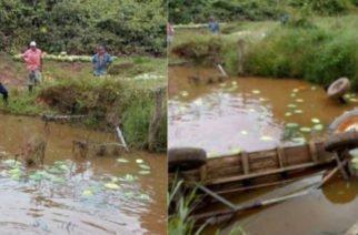 Tres toneladas de patilla al agua por desplome de puente en Montería