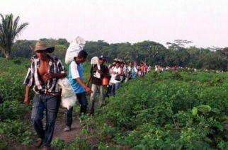 Campesinos cordobeses solicitan a Min. del Interior estrategias para garantizar su seguridad