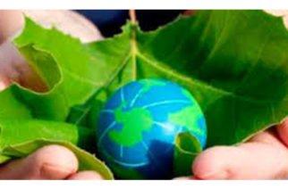 Hoy se celebra el Día Internacional para la prevención de la explotación del Medio Ambiente en la guerra y los conflictos armados