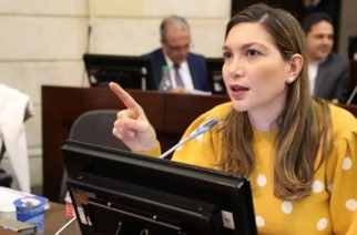 """""""Ley de Financiamiento no afecta a la clase media y ayuda a crear empleo y a reactivar economía"""": Ruby Chagüi"""