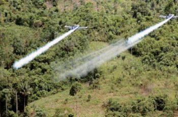 Aviones para fumigar cultivos de coca con glifosato ya están listos