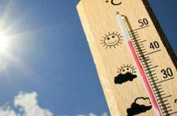 Altas temperaturas incrementan anomalías congénitas de corazón