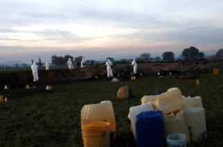Asciende a 117 el número de muertos por explosión de ducto de gasolina en México