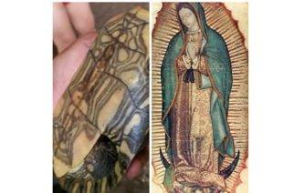 ¿Manifestación divina?, En Mómil apareció la Virgen de Guadalupe en una hicotea