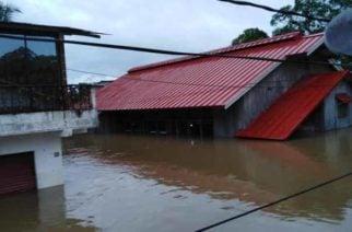 Gobernador del Chocó gestionará megaconcierto a favor del departamento