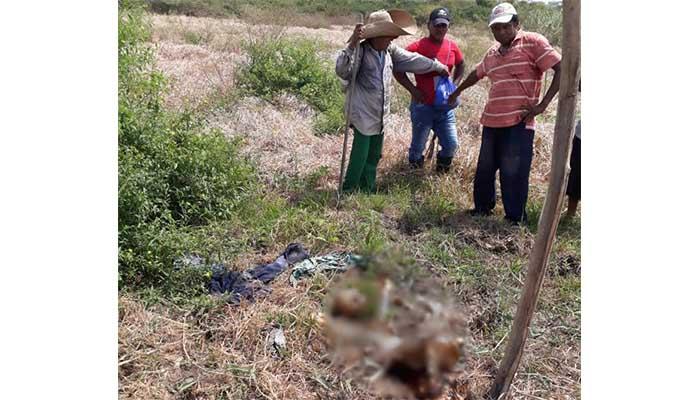 Hallan cadáver de hombre que habría sido atacado por caimán en Montería