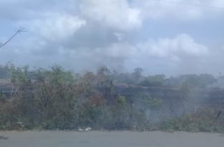 Imágenes: Incendio forestal en Tierralta