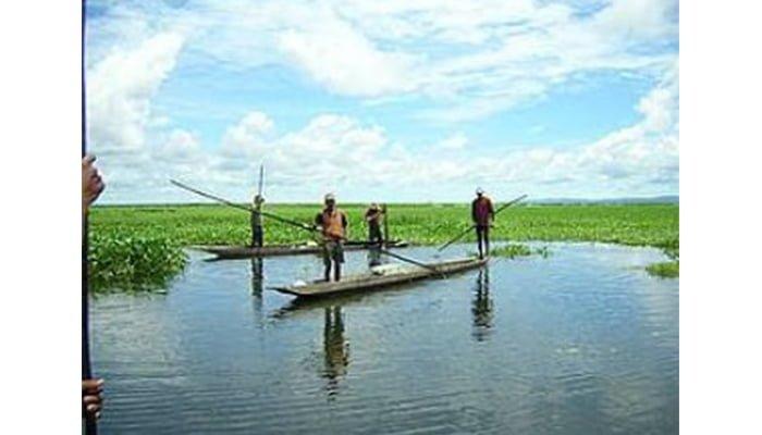 Investigación de Unicor evidencia incumplimiento a tutela que ordenó recuperación de humedales en el Sinú