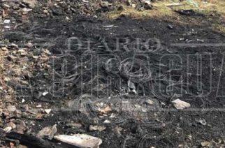 Más de 10 incendios forestales a diario en Montería, Bomberos piden conciencia al colectivo