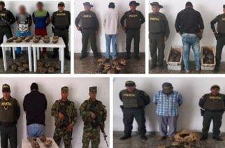 Policía captura a 6 personas con 80 hicoteas en Sahagún
