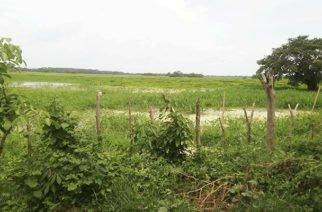 Urrá: una lección apocalíptica para Hidroituango