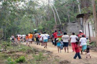 378 campesinos desplazados en Córdoba y Antioquia