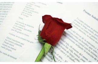 Además del Día del Síndrome de Down, hoy también se celebra el Día de la Poesía y de los Bosques