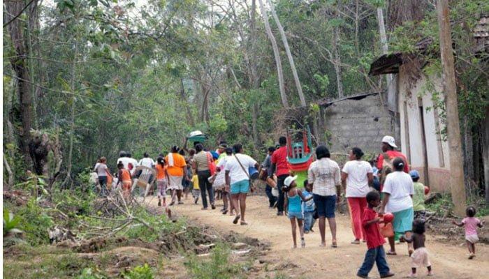 Desplazamiento masivo de familias campesinas reportan en Puerto Libertador-Córdoba
