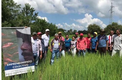 En Córdoba aprueban proyectos de inversión a emprendimientos colectivos de población vulnerable