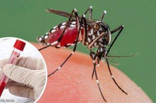 Planeta Rica y Pueblo Nuevo serían los municipios más afectados por dengue en el San Jorge