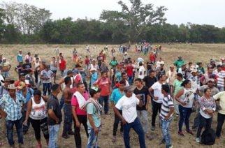 Subregiones del sur de Córdoba se unieron en protesta por incumplimiento de programa de sustitución de cultivos ilícitos