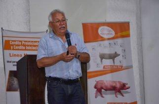 Colombia alcanza parámetros internacionales en producción porcina: especialista invitado a Unicor
