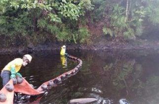 Ecopetrol ha gastado $100 mil millones por atentados a oleoductos