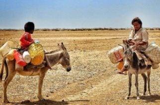 """""""S.M.S Guajira, una respuesta que salva"""" para ayudar a los niños de la Guajira"""
