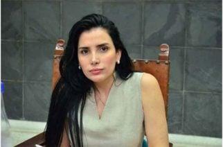 """""""Presidente del Senado desconoce régimen de responsabilidad política de los partidos en caso Merlano"""": MOE"""