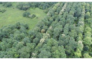 Impulsan creación de zona protegida por la ONU en Córdoba