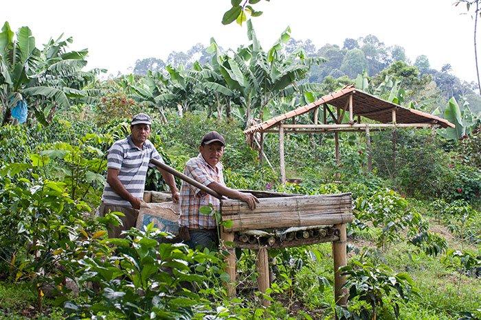 CNCA aprueba créditos para productores agropecuarios afectados con cierre de la Panamericana