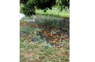 Vídeo: CDI de la Margen Izquierda en Montería se ha convertido en foco de contaminación